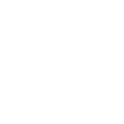 VHS Happy Tails